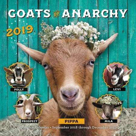 Goats of Anarchy 2019: 16-Month Calendar - September 2018 Through December 2019