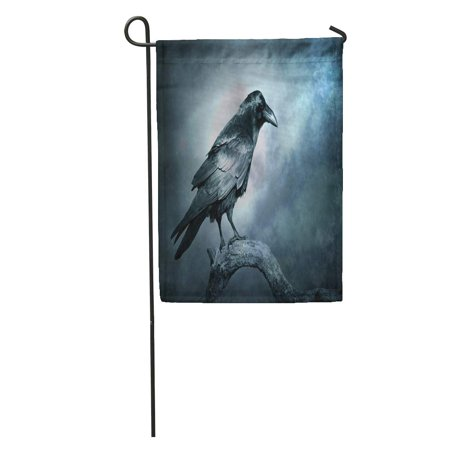 LADDKE Black Raven in Moonlight Perched on Tree Scary Creepy Gothic Setting Cloudy Night Halloween Garden Flag Decorative Flag House Banner 12x18 inch](Is Six Flags Halloween Scary)