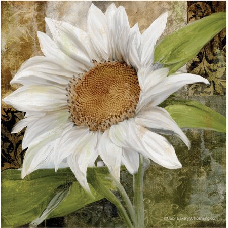 Thirstystone Occasions Drink Coasters, White Sunflower