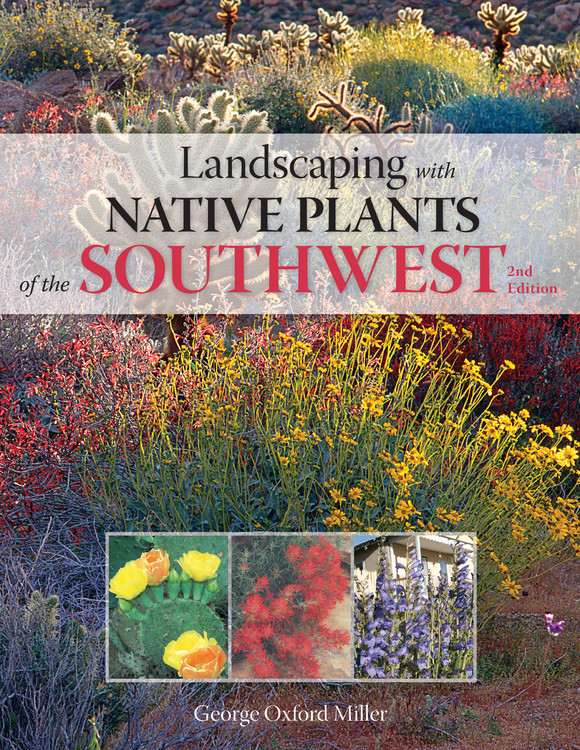 Landscaping With Native Plants Of The Southwest Walmart Com