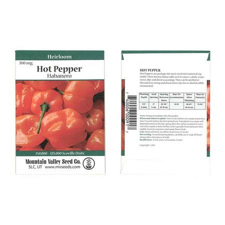 Orange Habanero Hot Pepper Garden Seeds - 300 mg Packet - Non-GMO, Heirloom Vegetable Gardening Seed
