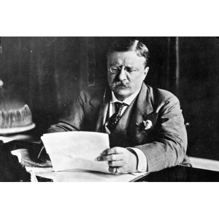 Laminated Poster Conversations Theodore Roosevelt Glossy Poster Banner President Teddy Poster Print 24 x 36