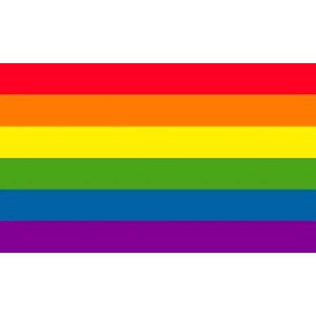 Rainbow Flag Gay Pride Lesbian Banner Striped Event Pennant LGBT Sign New 3x5 (Rainbow Flags)