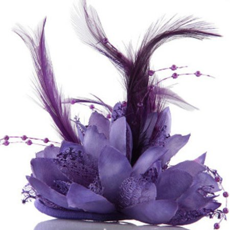 Tinymills Women Girl's Flower Feather Hairband Bead Corsage Hair Clips Fascinator Pin (Men's Feathered Hair)