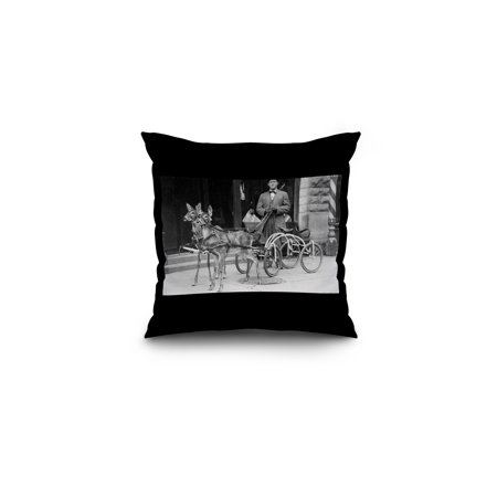 Trained Deer Harnessed to an Odd Sleigh on Wheels (16x16 Spun Polyester Pillow, Black Border)
