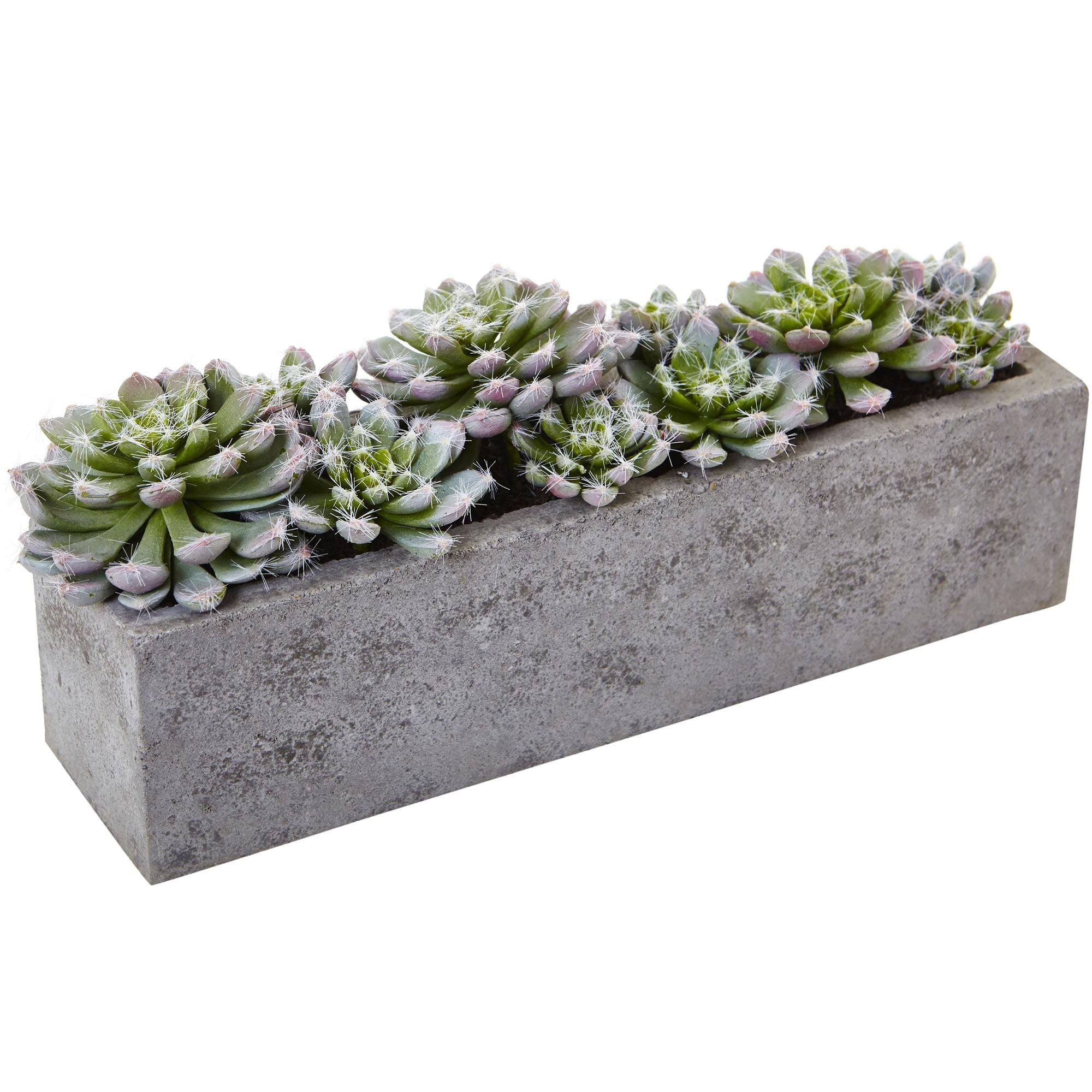 Nearly Natural Succulent Garden w/Textured Concrete Planter