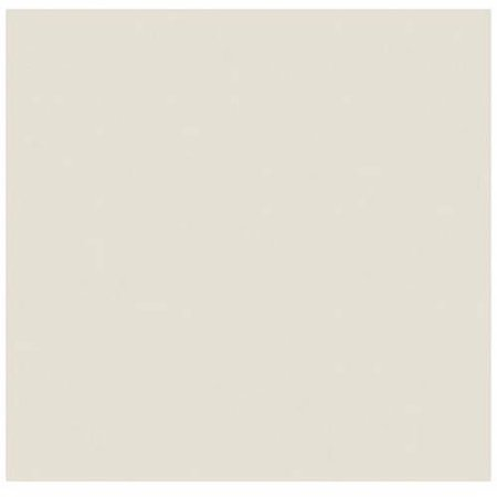 12 Cardstock Multi Pack - 12 x 12 Cardstock - 100lb. Natural (1000 Qty.)