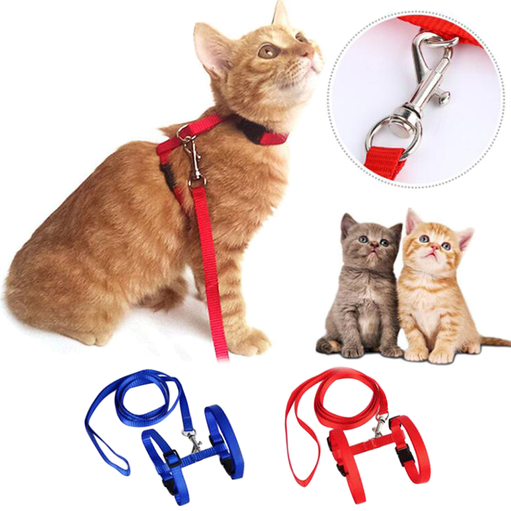 Legendog Adjustable Nylon Cat Harness and Leash, 2 Count