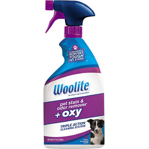 Woolite Pet Stain and Odor Remover, 22 fl oz