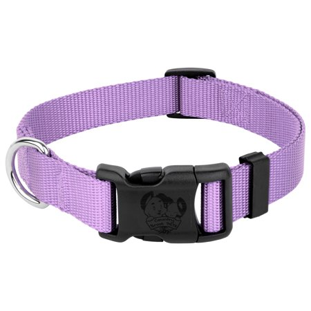 Country Brook Petz   Vibrant 23 Color Selection   Deluxe Nylon Dog Collar (1 Inch Wide)