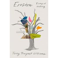 Erosion : Essays of Undoing