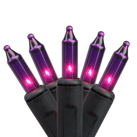 Set of 100 Pink Purple Mini Halloween or Christmas Lights - Black Wire