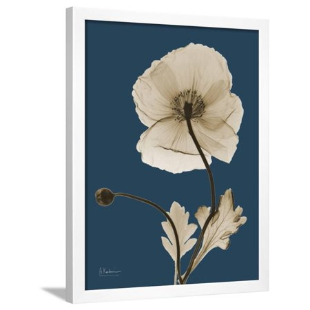 - Tonal Poppy on Navy Framed Print Wall Art By Albert Koetsier