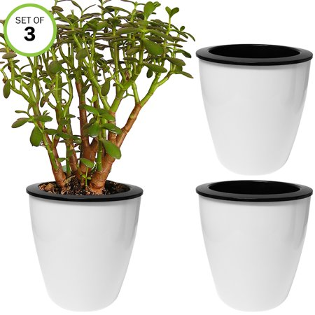 Evelots Self Watering Planter-Indoor-Outdoor-Flower-Herb-Seed-10 day-Large-Set/3