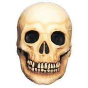Latex Large Skull Halloween Prop