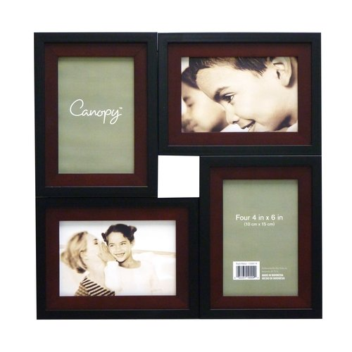 Canopy 4-Opening Collage Frame, Black/Walnut