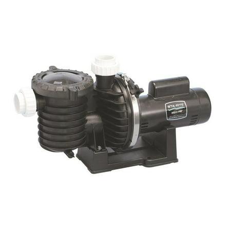 Pentair P6RA6E-205L 230V 1HP Max-E-Pro Standard Rated Pool and Spa Pump