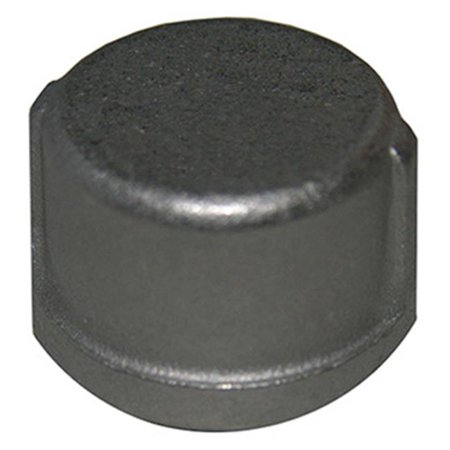 - 0.5 in. Stainless Steel Pipe Cap