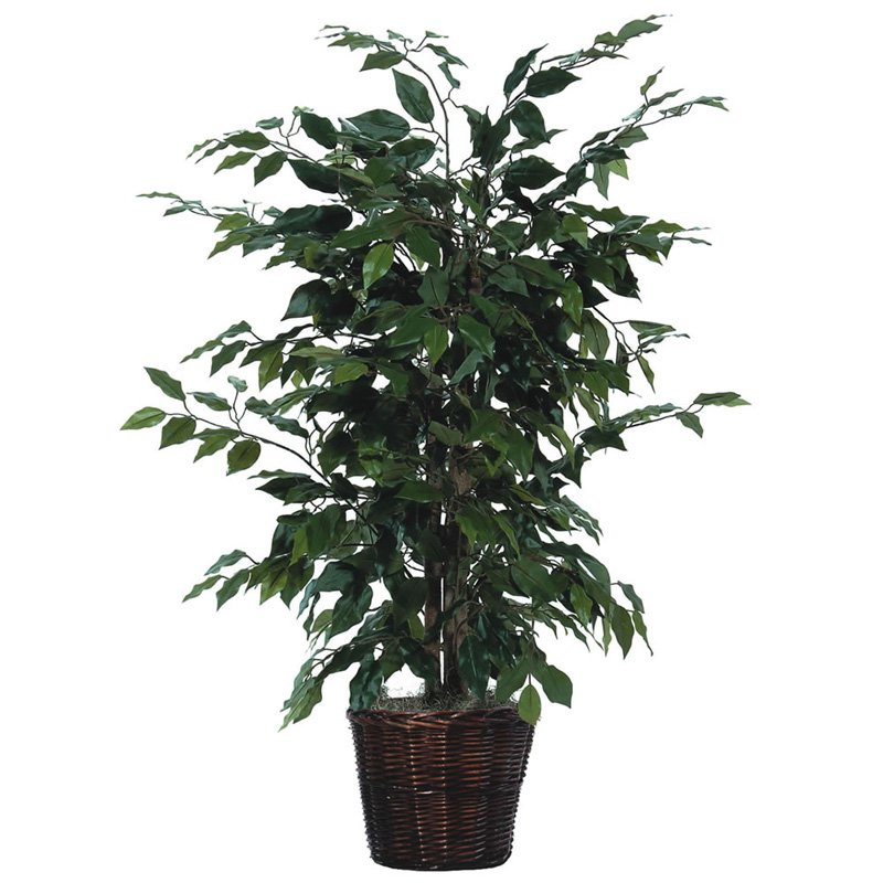 Vickerman 4' Artificial Ficus Bush in a Rattan Basket