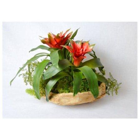 T Floral Company 16 x 13 in. Bromeliad In Wood Bowl - Orange & Red