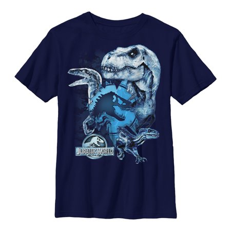Jurassic World: Fallen Kingdom Boys' Fallen Kingdom Dinosaur Frost T-Shirt](Boys Kingdom)