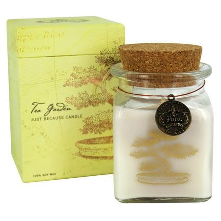 Pura Botanica   Just Because Soy Jar Candle Tea Garden   6 7 Oz
