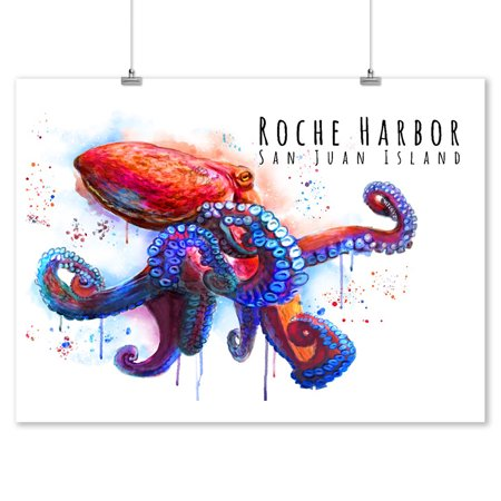 Watercolor Harbor - Roche Harbor, Washington - Octopus - Watercolor - Lantern Press Artwork (9x12 Art Print, Wall Decor Travel Poster)