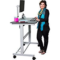 48  Stand Up Desk w/ FREE Monitor Mount (Black Shelves / Silver Frame)
