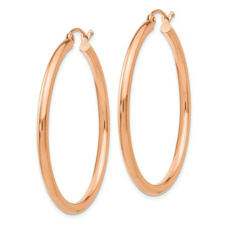 14k Rose Gold 2.5mm Polished Hoop Earrings TE535 - image 1 of 2