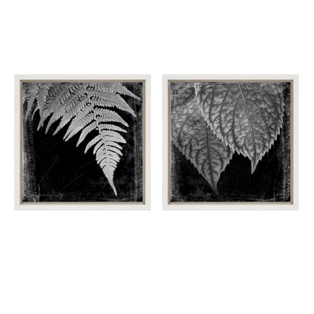 Kate and Laurel Sylvie Fern and Leaf Black and White Nature Digital Photo Prints on Framed Canvas Wall Art, 13x13 White, Set of 2 (Laurel Leaf)