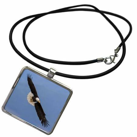 3dRose Bald Eagle flying - Necklace with Pendant (Flying Bald Eagle)