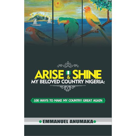 Arise And Shine My Beloved Country Nigeria: 100 Ways To Make My Country Great Again - (Best Way To Make Grout White Again)