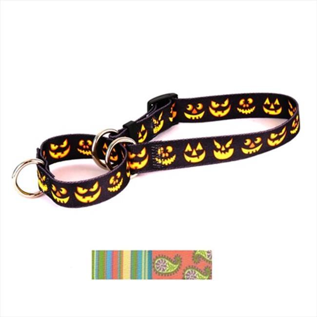Yellow Dog Design M-MELS102M Melon Stripes Martingale Collar - Medium