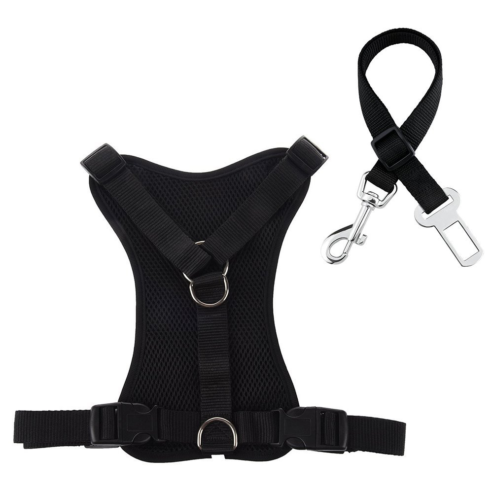 walmart dog harness