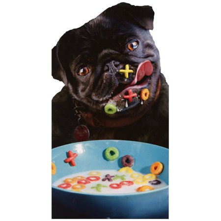 Avanti Press Dog Alphabet Cereal Funny Pug Birthday Card