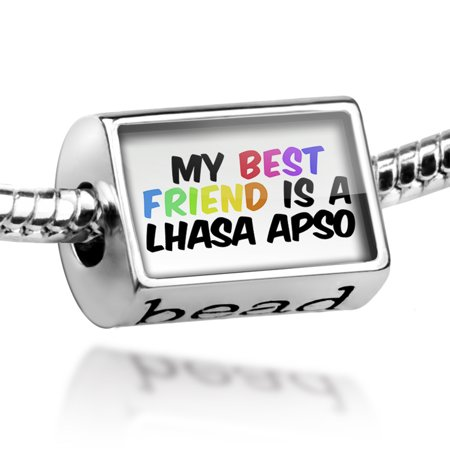 Bead My best Friend a Lhasa Apso Dog from Tibet Charm Fits All European (Tibet Silver Dog)