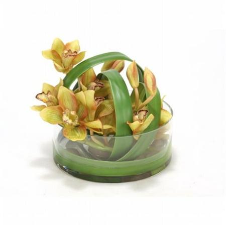 Distinctive Designs International 15930 Green Cymbidium Orchids in Clear Glass Vase