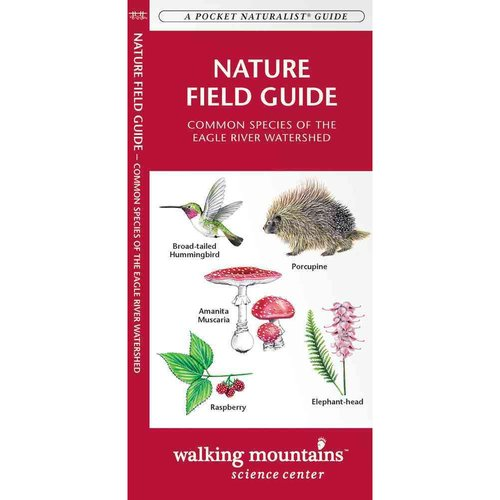Nature Field Guide (Walking Mountains, Co): Common Species of the Eagle River Watershed
