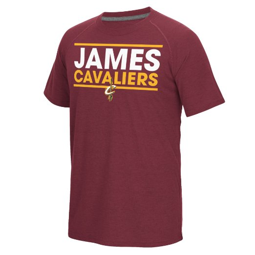 NBA Cleveland Cavaliers LeBron James #23 Men's Dassler Player Short Sleeve Climalite Ultimate Tee, L