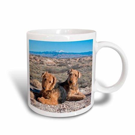 3dRose Airedale Terrier dogs, New Mexico - US32 ZMU0027 - Zandria Muench Beraldo, Ceramic Mug, 11-ounce