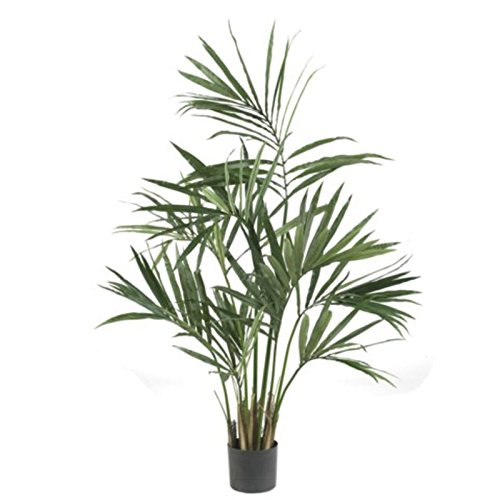 "GHP 5'x36""x36"" Decorative Artificial Potted Kentia Silk Palm Tree Plants"