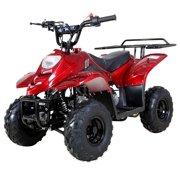Tao Tao 110cc ATV Quads Youth ATV Kids Quad ATVs 4 Wheeler Four Wheelers Fully Automatic 4 Stroke Engine 6 Inch Tire