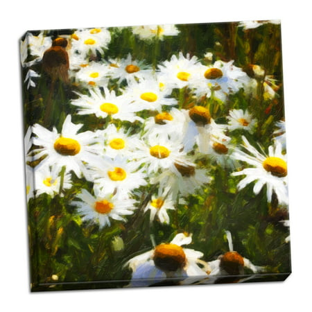 Gango Home Decor Contemporary Sunlit Daisies by Alan Hausenflock (Ready to Hang); One 24x24in Hand-Stretched (Sunlit Daisies)