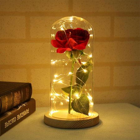 Enchanted Red Silk Rose,Beauty and the Beast Rose with Fallen Petals in A Light Dome,Home/Office or Home Decorations, Anniversary, Valentine's Day Christmas Gift ()