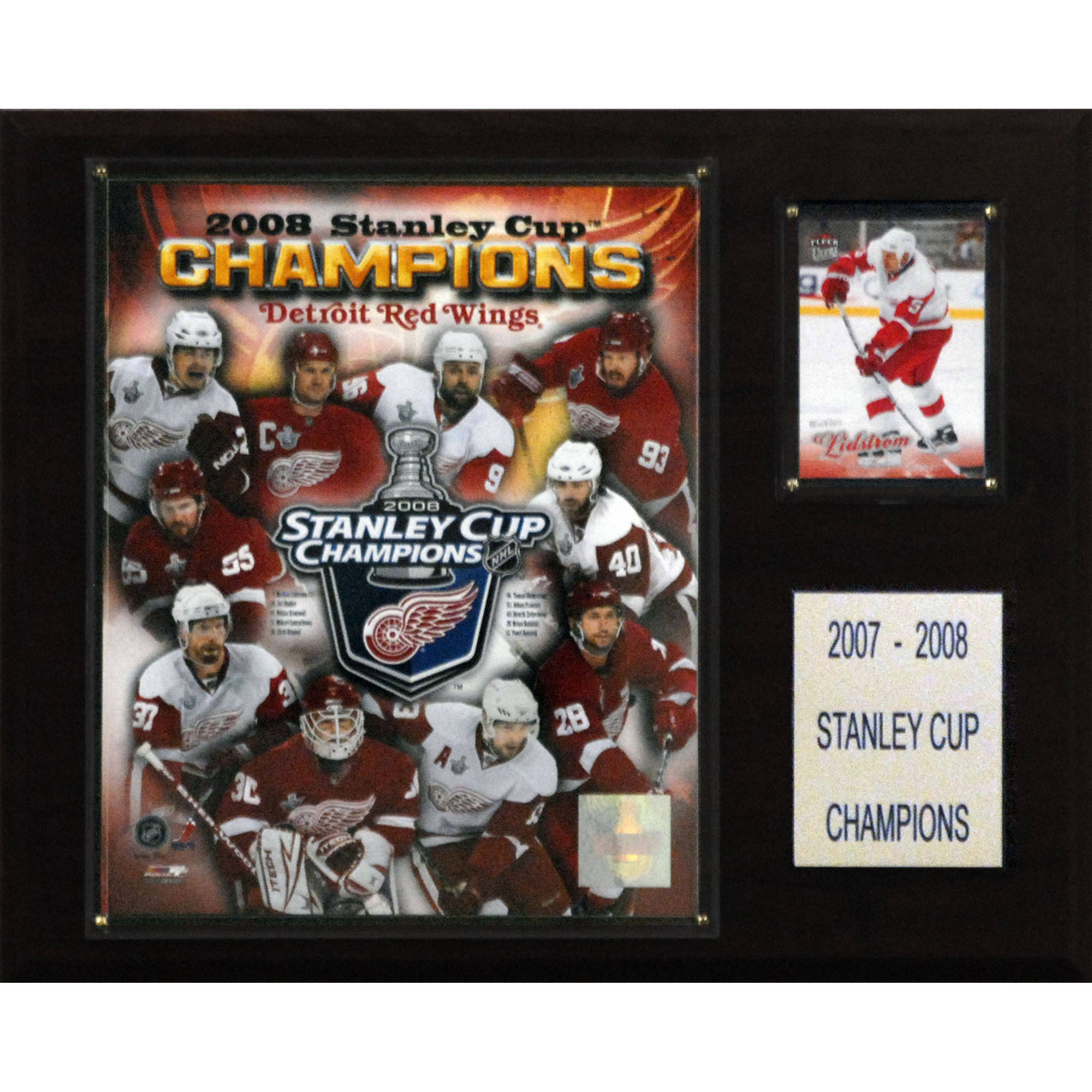 C&I Collectables NHL 12x15 Detroit Red Wings 2008 Stanley Cup Champions Plaque