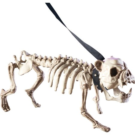 Posable Skeleton Dog Halloween Decoration, USA, Brand Collections Etc