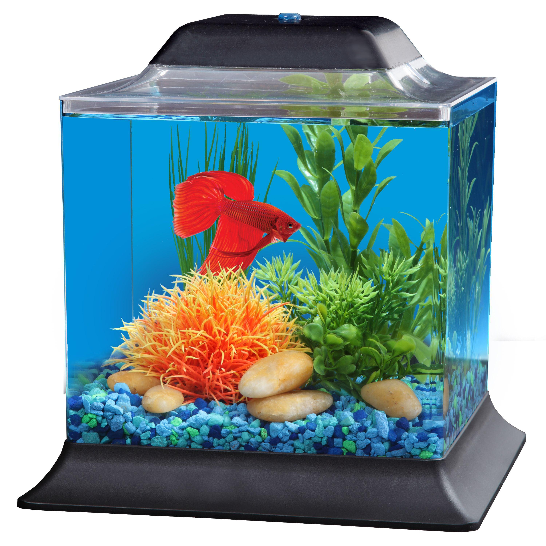Hawkeye 1.5-Gallon Betta Fish Tank Aquarium Kit