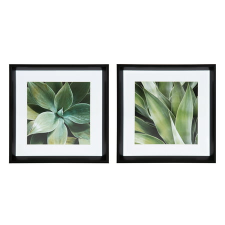 Kate and Laurel Calter Green Succulent Leaves Matted Framed Print Under Glass Art Set by Amy Peterson, 15.5x15.5-inches/each, Black (Laurel Leaf)