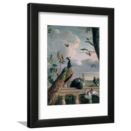 Palace of Amsterdam with Exotic Birds Peacock Bird Animal Painting Framed Print Wall Art By Melchior de Hondecoeter