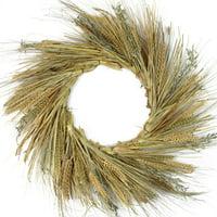 "22"" Autumn Harvest Wheat Grass and Grapevine Thanksgiving Fall Wreath - Unlit"
